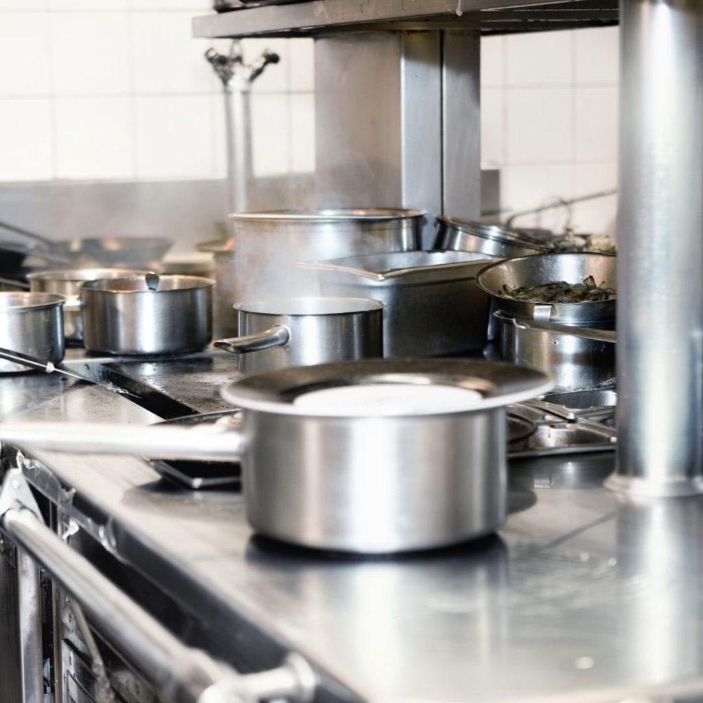 Pest Control Commercial Kitchen
